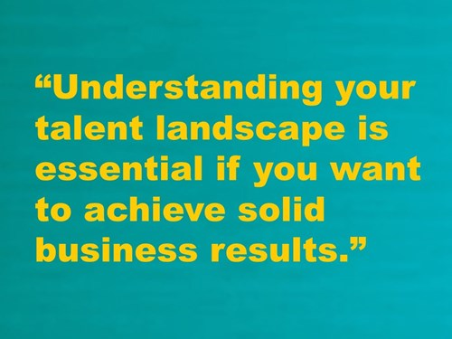 Understanding your talent landscape is essential if you want to achieve solid business results.